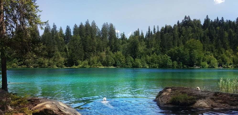 Crestasee lake